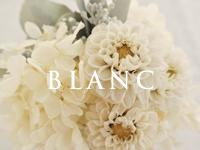 フランジュールのプリザーブドフラワー BLANCシリーズ。